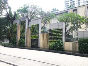 millennium-residence-bangkok-green-wall